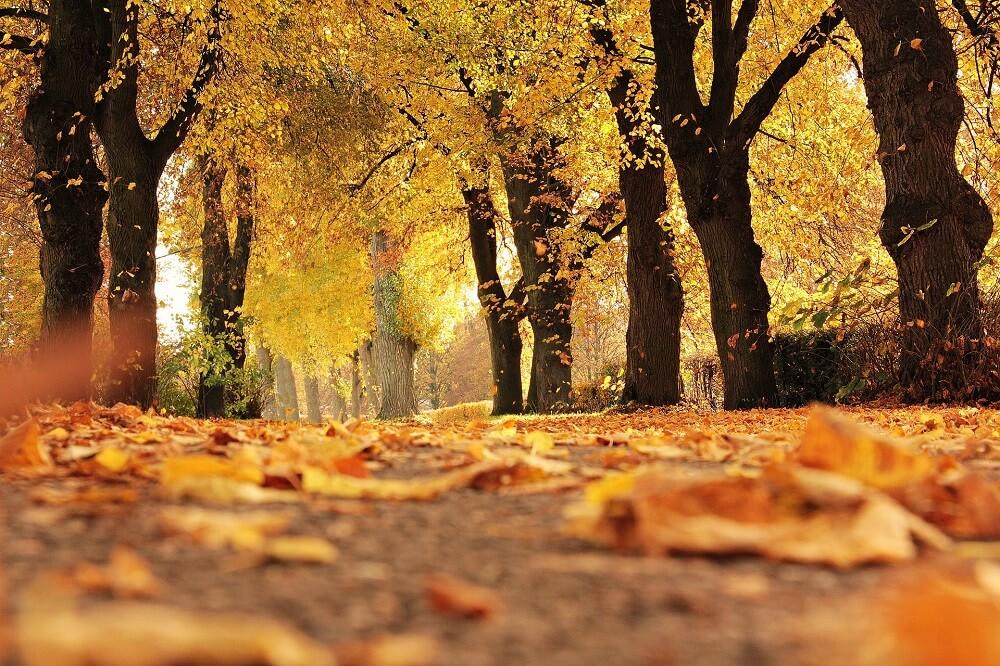 Przygotuj się na jesień – jak dbać oraz impregnować odzież i obuwie