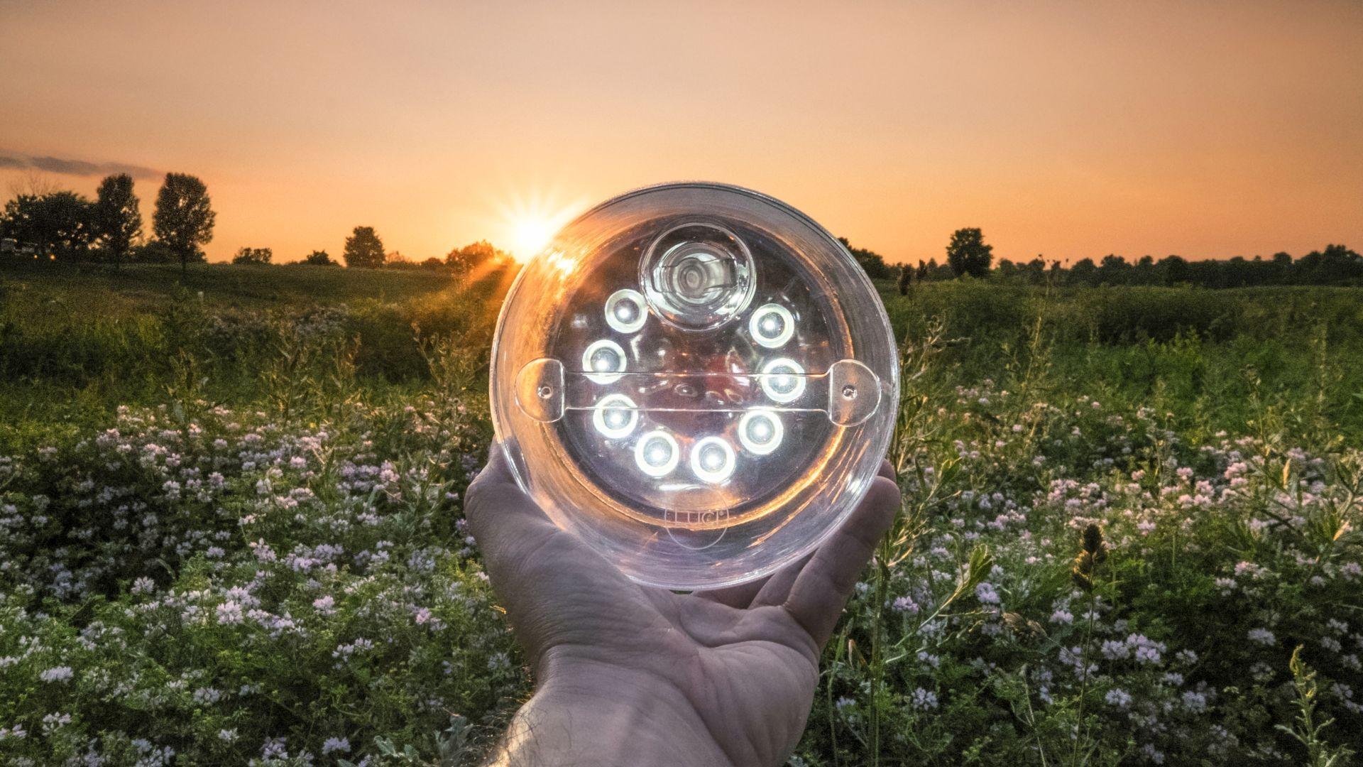 Test Lampki Solarnej Luci Original – Magazyn WIOSŁO